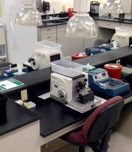 dermatology quality management system
